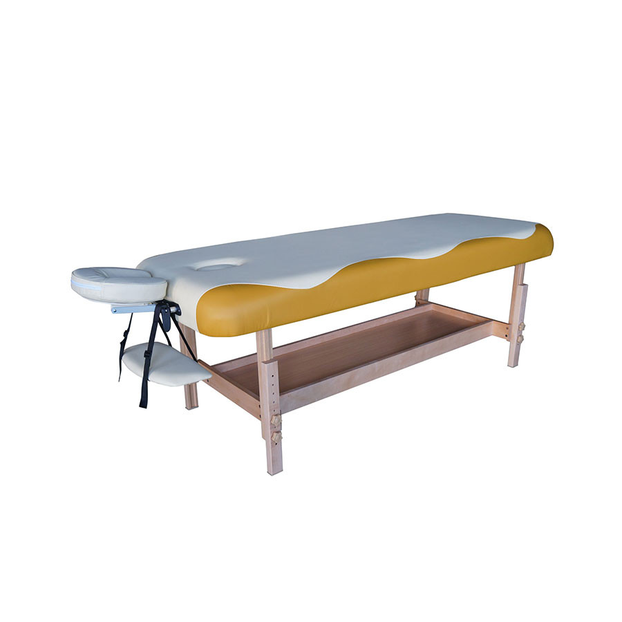 Массажный стол DFC NIRVANA SUPERIOR TS100