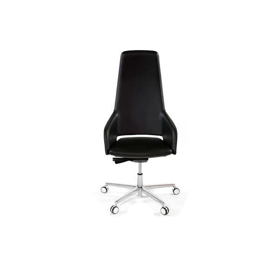 Кресло руководителя Scott Howard Sinetica Captain/A черноеДизайнерское кресло Sinetica Captain/A станет отличным дополнением любого офиса. Величественный внешний вид и натуральные материалы добавят солидности компании.<br>